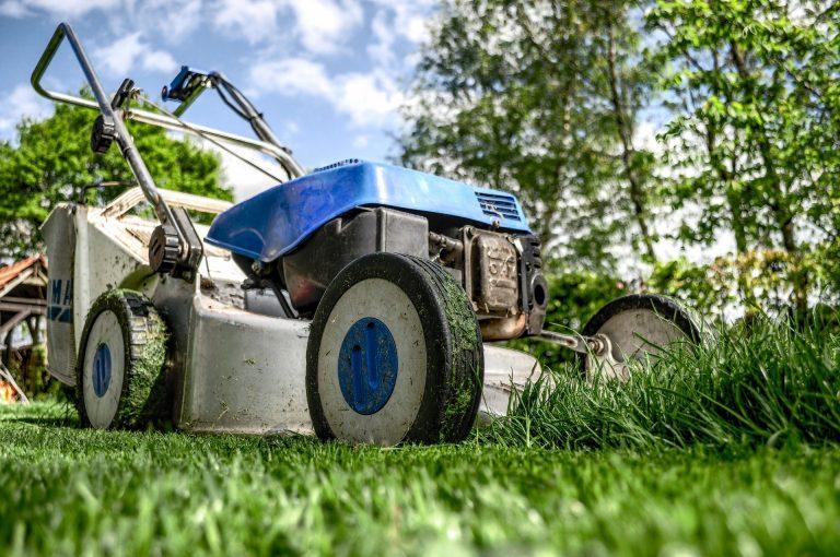6 tipů, jak na jaře ošetřit trávník