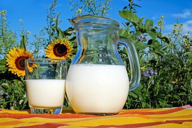 Rostlinná mléka a jak je vyrobit doma
